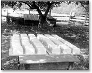 blocks of butter