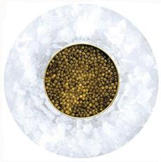 Golden Osetra Caviar