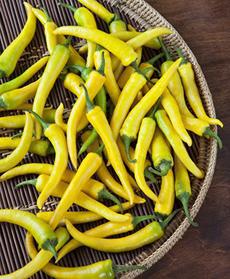 Golden Cayenne Pepper
