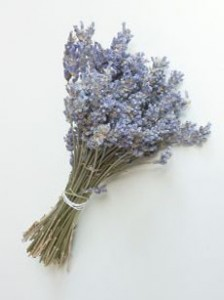 184863_lavender_bouquet_EwaDacko-230