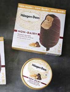 Haagen-Dazs Non Dairy