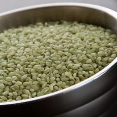 Green Bamboo Rice