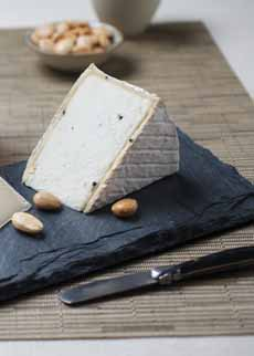 Truffle Cheese
