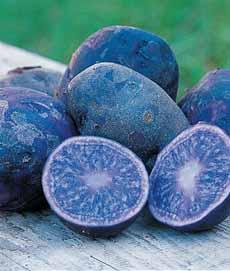 Blue Peruvian Potatoes