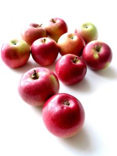 apple-macintosh-230