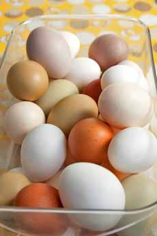 Natural Hens' Eggs Colors