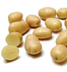 Baby Yellow Dutch Potatoes