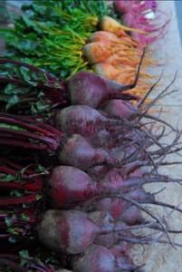 beets-purple-orange-caroletopalian-ediblemadison-230r