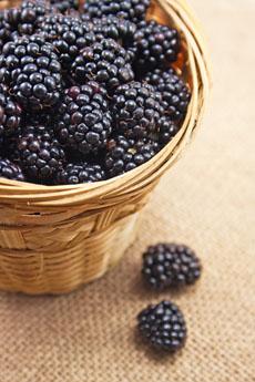 http://www.dreamstime.com/royalty-free-stock-image-blackberries-basket-image26804436
