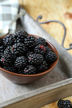 http://www.dreamstime.com/stock-photography-ripe-blackberries-bowl-food-close-up-image33432102