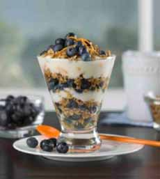 Blueberry Yogurt Parfait
