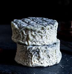 Halloween Cheese