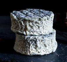 Halloween Ghost Cheese