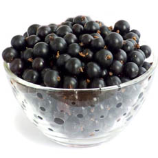 Fresh Black Currants