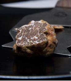 brown-truffle-230