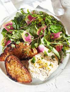 /home/content/p3pnexwpnas01 data02/07/2891007/html/wp content/uploads/burrata spring salad goodeggs 230r