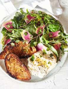 /home/content/p3pnexwpnas01 data02/07/2891007/html/wp content/uploads/burrata spring salad goodeggs 230r