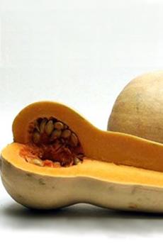 butternut-squash-230