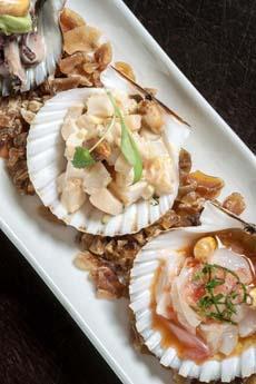 ceviche-scallop-shells-raymiNYC-230