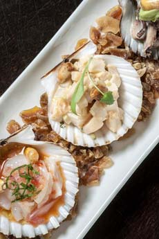 ceviche-scallop-shells-raymiNYC-230r