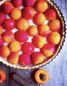 cherry-tart-seandooley-redjacketorchardsFB-230r
