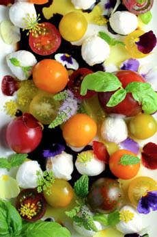 cherry-tomato-mozz-flower-salad-gourmetattitude-230