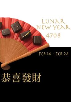 chinese-2010-230