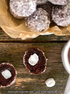 chocolate-donut-holes-2-kaminsky-230