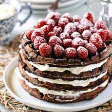 Chocolate Raspberry Waffle Cake