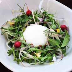 Circular Salad