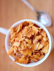 coconut-chips-wholepurerecipes-230r