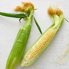Fresh Corn With Tassels