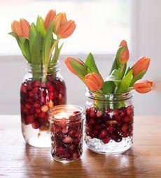 Cranberries In Vase