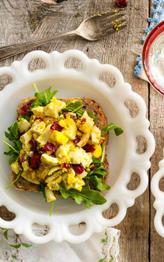 curried-egg-salad-louisemellor-safeeggs-230