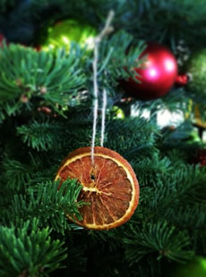 dehydrated-grapefruit-tree-ornament-specialtyproduce-230