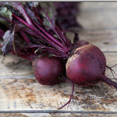 detroit-red-beets-beauty-goodeggs-230