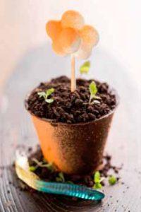 Dirt Cake Flowerpot