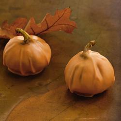 Chocolate Pumpkins - John & Kira's