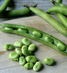 fava-beans-thedeliciouslife-230