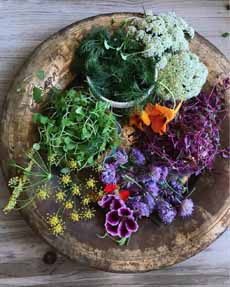 Colorful Garnishes