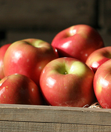 fuji-apples-230