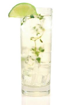 gin-tonic-lime-qtonic-230