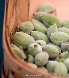green-almonds-hannahkaminsky-230