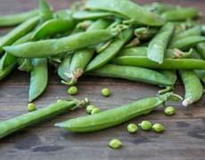 Spring Peas
