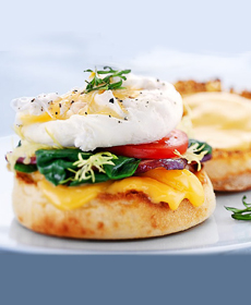 grilled-cheese-benedict-230