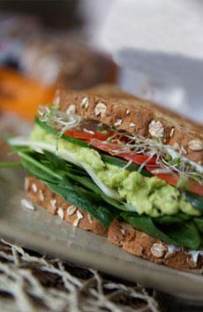guac-sandwich-yvonne-triedandtasty-230