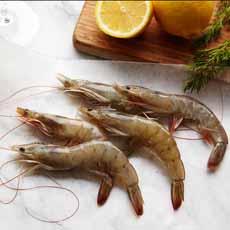Raw Whole Shrimp