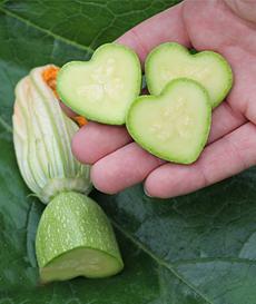 heart-zucchini-burpee-molds-230