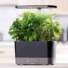 AeroGarden Indoor Herb Garden