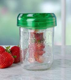 Ball Jar Infuser Lid